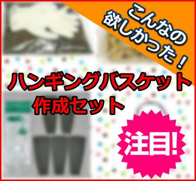 bn_hansaku